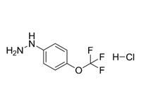 4-三氟甲氧基苯肼盐酸盐,98%(HPLC)