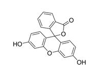 荧光素溶液,5g/L