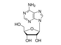 腺苷,BR,99%