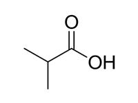 <em>异</em>丁酸,CP,98.5%